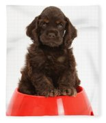 Cocker Spaniel Pup In Doggy Dish Fleece Blanket