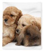 Cockerpoo Puppies And Rabbit Fleece Blanket
