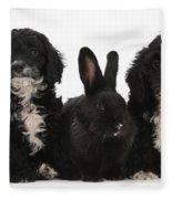 Cockerpoo Pups And Rabbit Fleece Blanket
