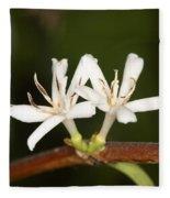Coffee Flowers Fleece Blanket