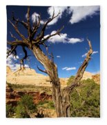 Cohab Canyon At Capitol Reef Fleece Blanket