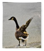 Cold Goose Bath Fleece Blanket