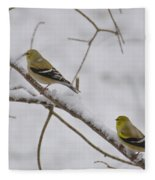 Cold Yellow Finch Walk Fleece Blanket