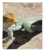 Collard Lizard Fleece Blanket