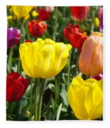 Colorful Bright Tulip Flowers Field Tulips Floral Art Prints Fleece Blanket