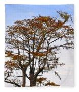 Colorful Cypress Fleece Blanket