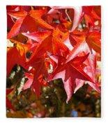 Colorful Fall Tree Red Leaves Art Prints Fleece Blanket