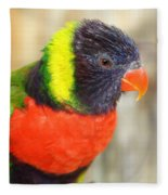Colorful Lorikeet Parrot Fleece Blanket