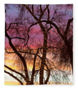 Colorful Silhouetted Trees 37 Fleece Blanket