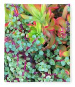 Colorful Succulent Plants For You Fleece Blanket