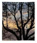 Colours Of The Dusk Fleece Blanket