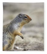 Columbian Ground Squirrel, Banff Fleece Blanket