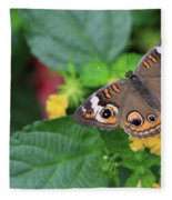 Common Buckeye II Fleece Blanket