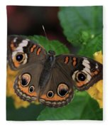 Common Buckeye Fleece Blanket