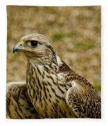 Common Female Kestrel Fleece Blanket