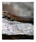 Common Lizard Fleece Blanket