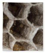 Common Wasp Larva Fleece Blanket