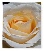 Common Wealth Glory Rose Fleece Blanket