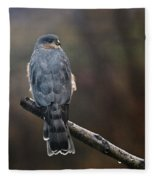 Coopers Hawk Fleece Blanket