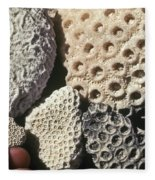 Coral Cobbles On Beach Of Bonaire Fleece Blanket