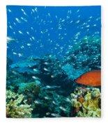 Coral Reef In Thailand Fleece Blanket