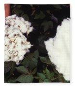 Cotton Comparison Fleece Blanket