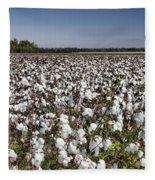 Cotton In Limestone County Fleece Blanket