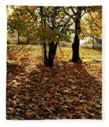Country Color 11 Fleece Blanket