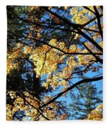 Country Color 25 Fleece Blanket