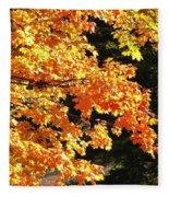 Country Color 26 Fleece Blanket
