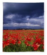 County Kildare, Ireland Poppy Field Fleece Blanket