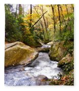 Courthouse River In The Fall 2 Fleece Blanket