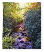 Courthouse River In The Fall 3 Fleece Blanket