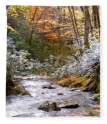 Courthouse River In The Fall Fleece Blanket