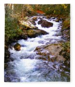 Courthouse River In The Fall Filtered Fleece Blanket