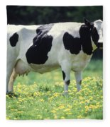 Cow In Pasture Fleece Blanket