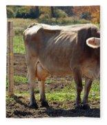 Cow Shadows Fleece Blanket