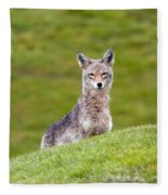 Coyote Behind The Hill Fleece Blanket
