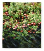Cranberry Bog Fleece Blanket
