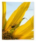 Crawling Along The Sunflower Fleece Blanket