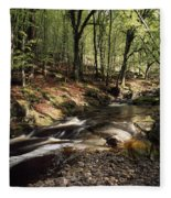 Creek In Woods, Cloughleagh, County Fleece Blanket