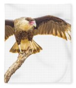 Crested Caracara Taking Off Fleece Blanket