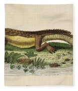 Crocodile Fleece Blanket