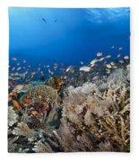Crystal Bay Panorama Fleece Blanket