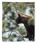 Cub In Tree Fleece Blanket