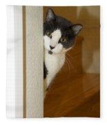 Curious Cat Fleece Blanket