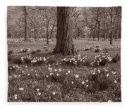 Daffodil Glade Number 2 Bw Fleece Blanket
