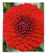 Dahlia 4001 Fleece Blanket