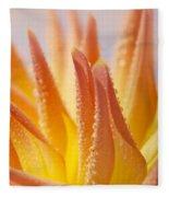 Dahlia Flower 14 Fleece Blanket
