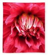 Dahlia In Red Fleece Blanket